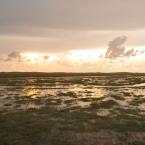 St. Peter Ording - Salzwiesen überflutet